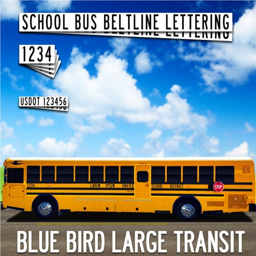 Blue Bird Transit School Bus